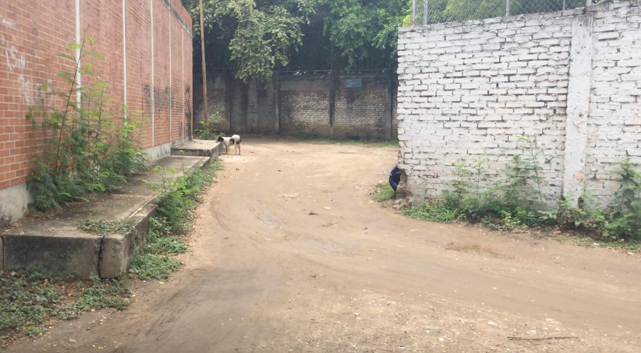 Callejón en barrio la esperanza de Neiva genera inseguridad