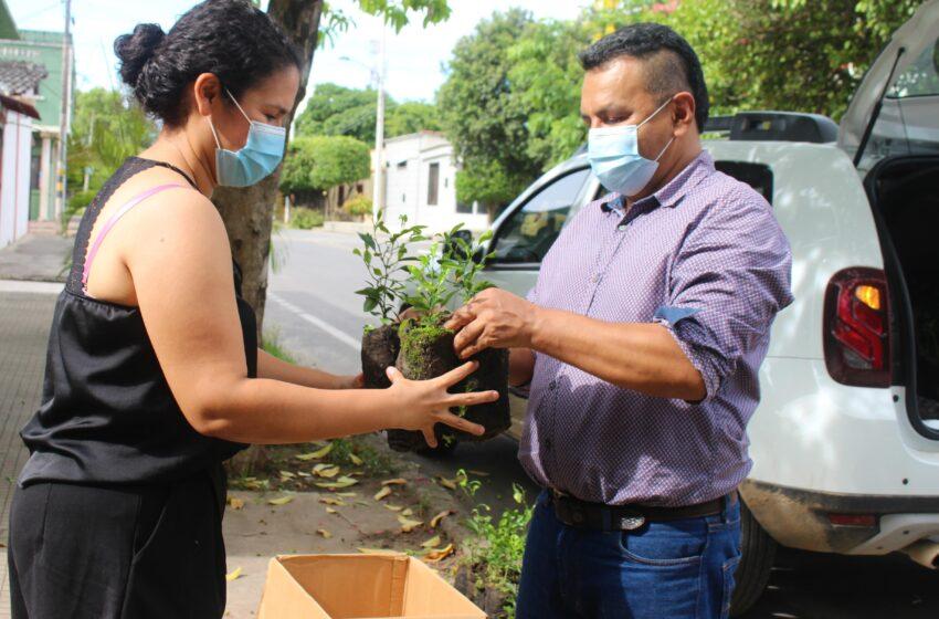 Más de 89 mil árboles entregó Ecopetrol en el Huila