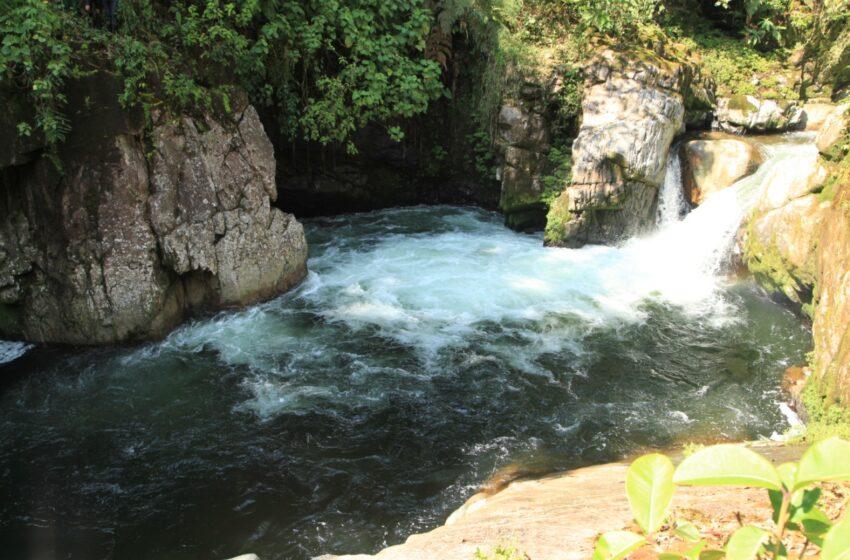 Listo el plan de manejo ambiental para el corredor biológico Guácharos-Puracé