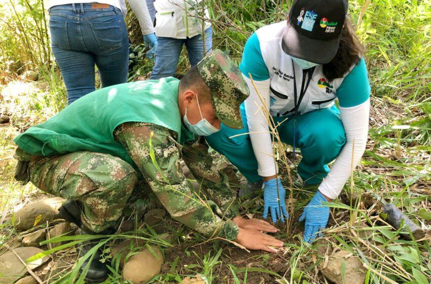 Con reforestación a la ribera de la quebrada Matando se conmemoró día mundial de la tierra