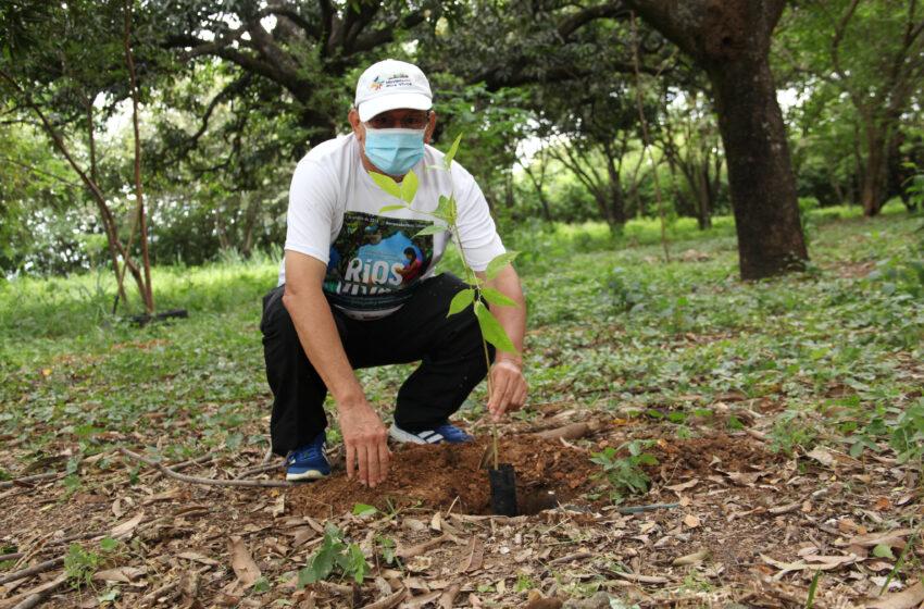 Personería de Neiva participó en nueva jornada de siembra de árboles