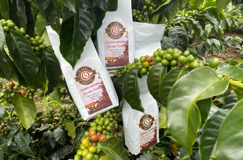 """¡De Huila a Europa! persona en reincorporación exporta su marca de café al """"viejo continente"""""""