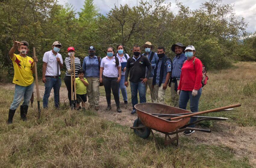 Con la siembra de 200 árboles se busca conservar la quebrada Matamundo de Neiva